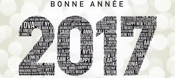 bonneannee17